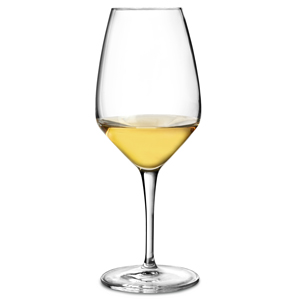 Atelier White Wine Glasses 15.5oz / 440ml