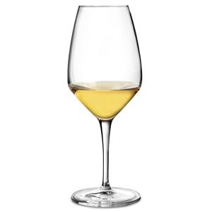 Atelier White Wine Glasses 15.5oz / 440ml