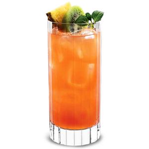Bach Beverage Hiball Tumblers 17oz / 480ml