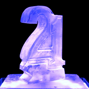 21st Birthday Vodka Luge