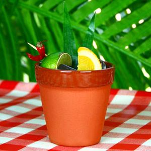 Flower Pot Cocktail Mug 8.5oz  240ml (Single)