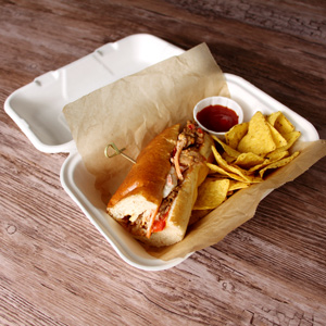 Biodegradable Sugarcane Clamshell Takeaway Box 9 x 6inch
