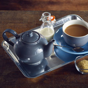 Royal Genware Teapot Grey 16oz / 450ml
