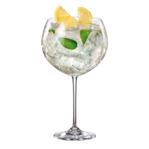 Enebro Gin Cocktail Glasses 30oz / 850ml