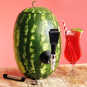 Watermelon Keg Tap Kit