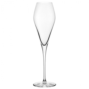 Nude Fantasy Champagne Glasses 10.25oz / 290ml