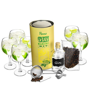 Home Gin Making Kit with Gin Balloon Glasses