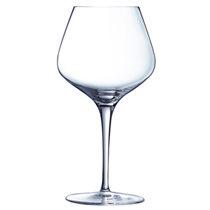 Sublym Ballon Wine Glasses 16oz / 450ml