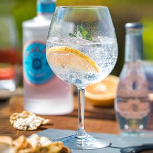 Eden Plastic Gin Glasses 24oz / 680ml