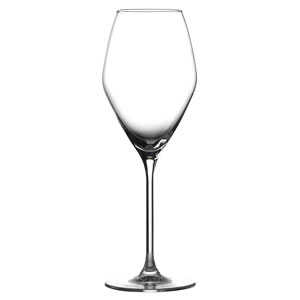 Doyenne Sparkling Wine Glasses 12oz / 340ml