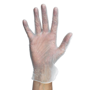 Clear Powder Free Gloves Large