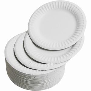 Paper Plates 15cm