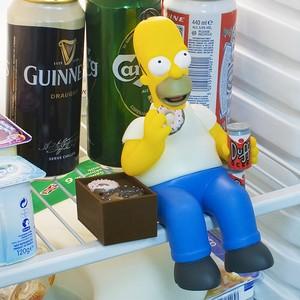 Homer Simpson Talking Fridge Guard