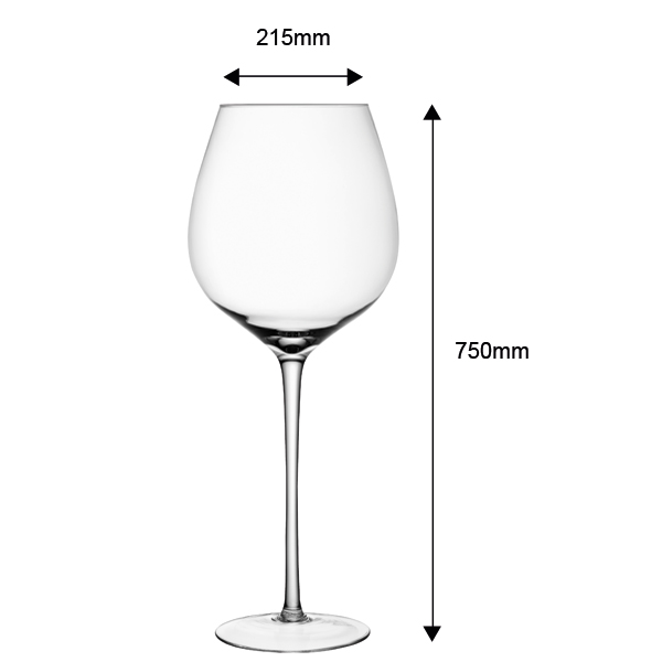 Lsa Maxa Giant Wine Glass 651oz 185ltrs