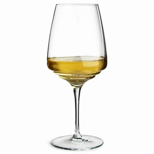 Esperienze Wine Glasses 16.9oz / 480ml (Pack of 6) Image