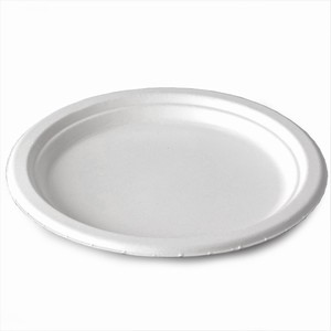 Biopac Biodegradable Sugarcane Large Plates