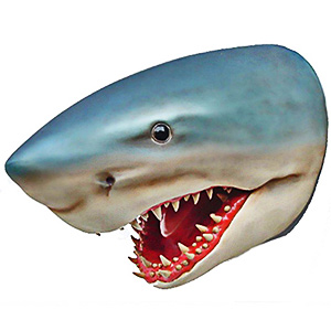 Shark Head Lifesize Replica