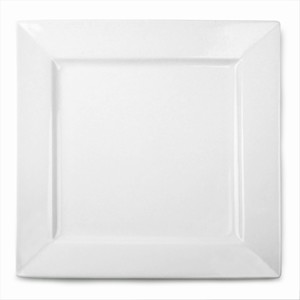 Royal Genware Square Plates 21cm