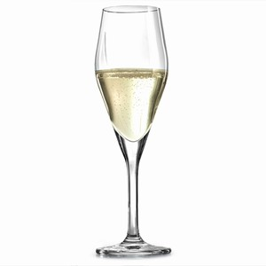 Audience Champagne Flutes 8.8oz / 250ml