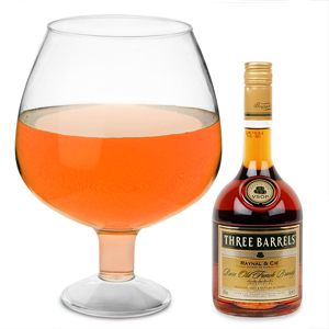 Giant Acrylic Brandy Glass 193.5oz / 5.5ltr