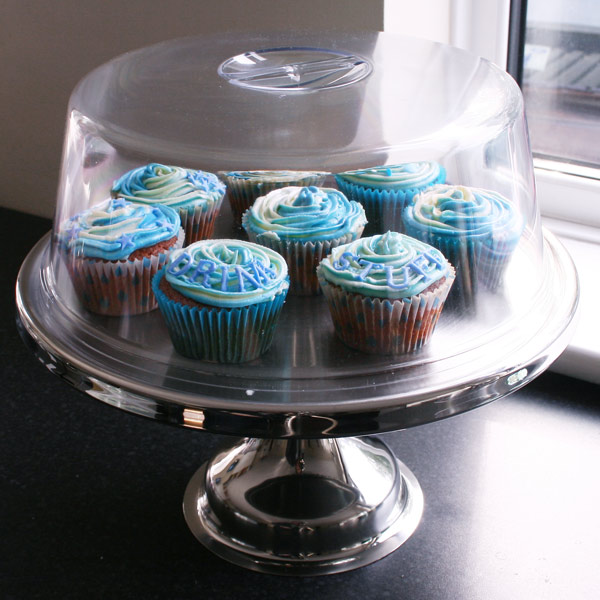 Stainless Steel Cake Stand and Plastic Cake Dome | 12 Inch Cake ...
