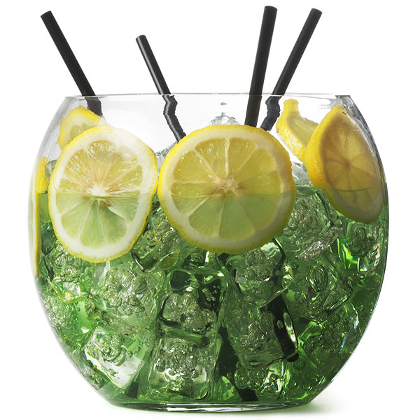Fish Bowl Glasses For Gin