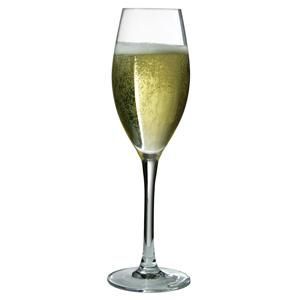 Malea Champagne Flutes 7.7oz / 220ml