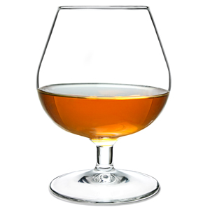 Degustation Brandy Glasses 8.8oz / 250ml