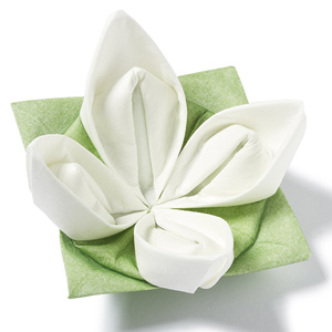 Seerose Origami Dinner Napkins Green & White 40cm