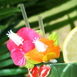 Tiki Island Flower Straws Pack Of 6