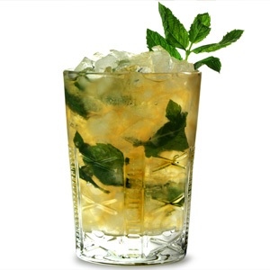Soho Julep Tumblers 12oz / 340ml