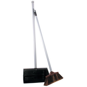 Spot Sweep Dustpan and Brush