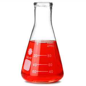 Glass Conical Flask 100ml