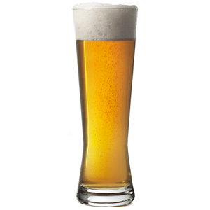 Polite Beer Glasses 14oz / 400ml