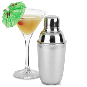 Stainless Steel Mini Cocktail Shaker 10oz