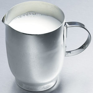 Define Stainless Steel Milk Jug